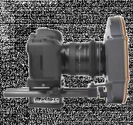 F&V 20809031