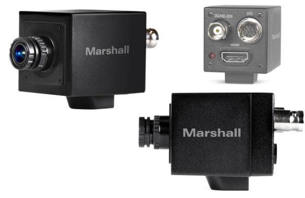 Marshall CV505-MB/M