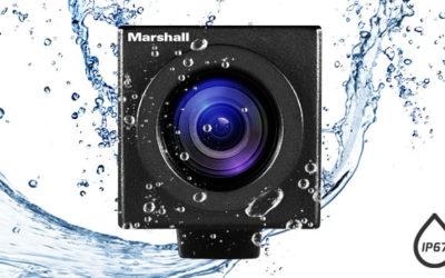 Marshall CV502-WP